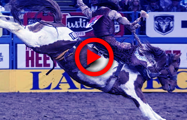 How to watch Wrangler NFR Live Streaming Free